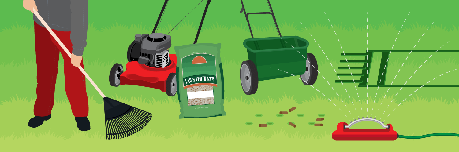 7 Lawn Care Tips For Spring