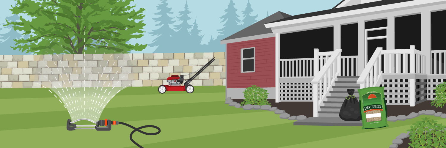 How to Identify, Prevent and Treat Lawn Disease