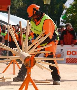 World Logging Championship