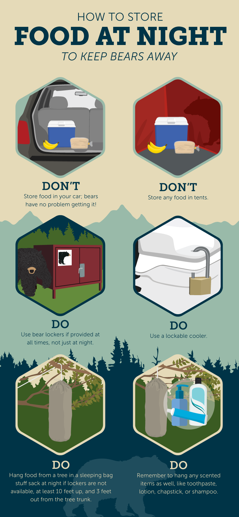 How to Store Food at Night - How to Set up Your Campsite