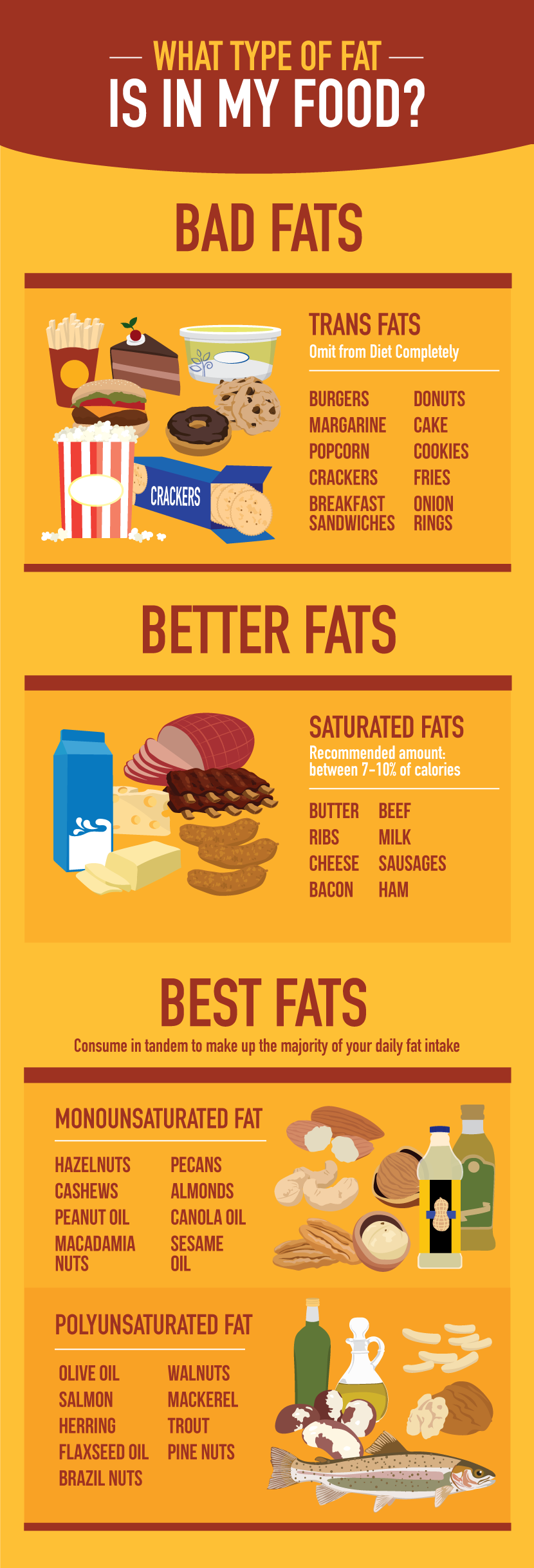 What Type of Fat is in Your Food? - Cracking the Case on Nuts