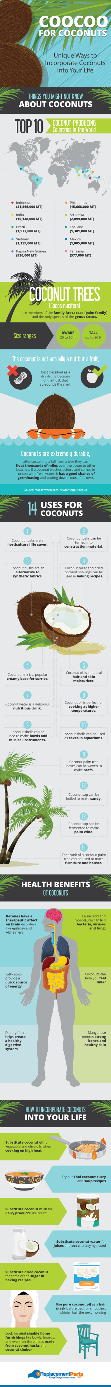 Unique Uses For Coconuts