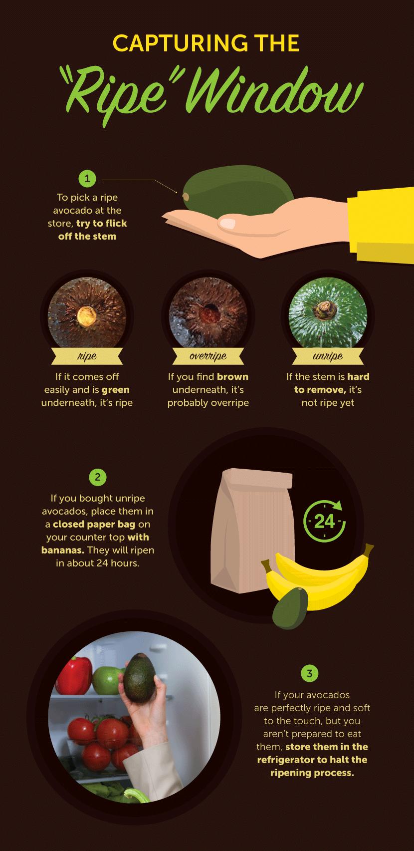 10 Ways to Make Gourmet Avocado Toast - Capturing the Ripe Window