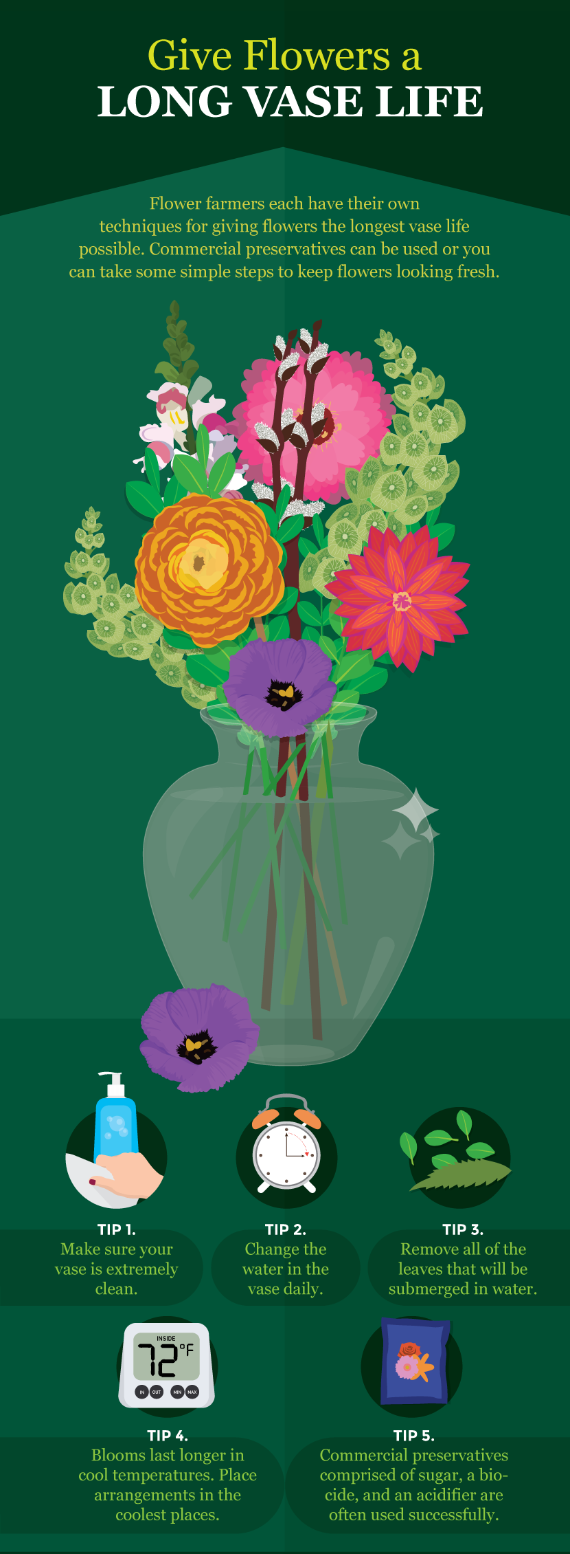 Give Flowers a Long Vase Life - A Guide to Growing Your Own Cutting Flowers