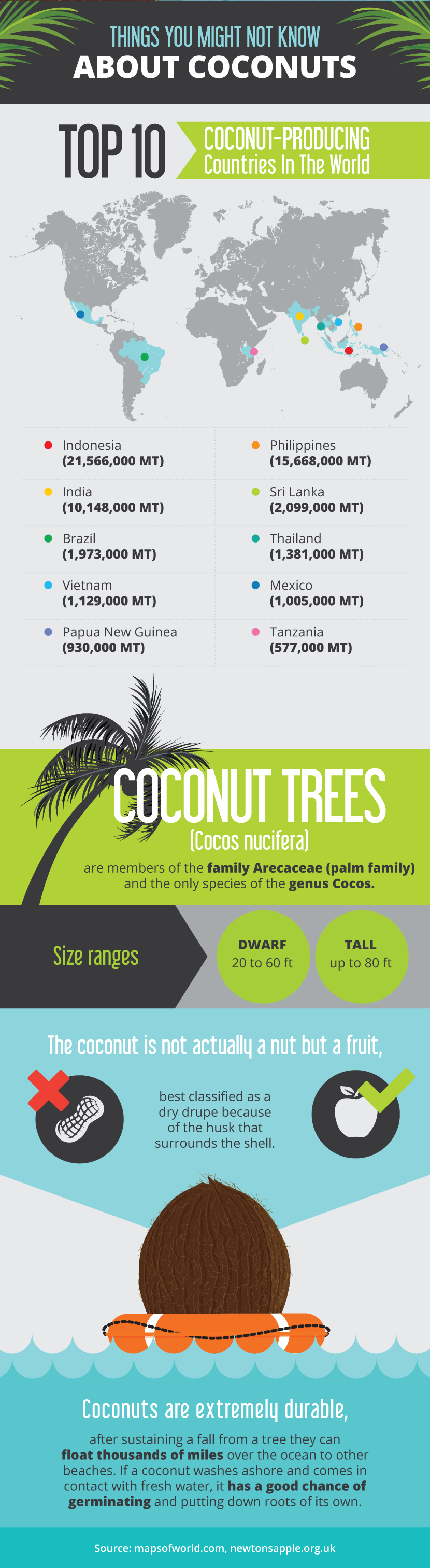 Facts About Coconuts - Unique Ways to Incorporate Coconuts Into Your Life