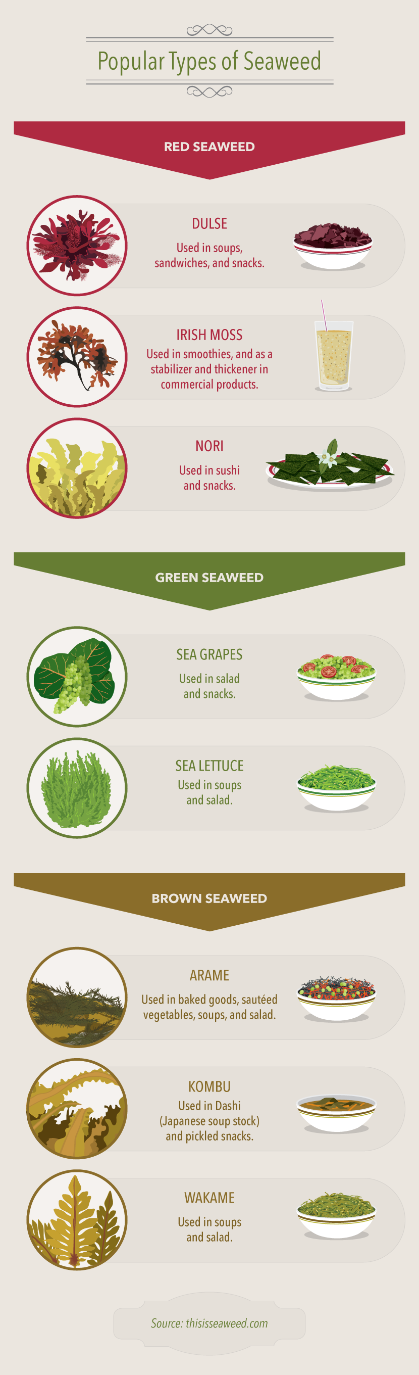 Popular Seaweed Types - A Guide to Eating Seaweed