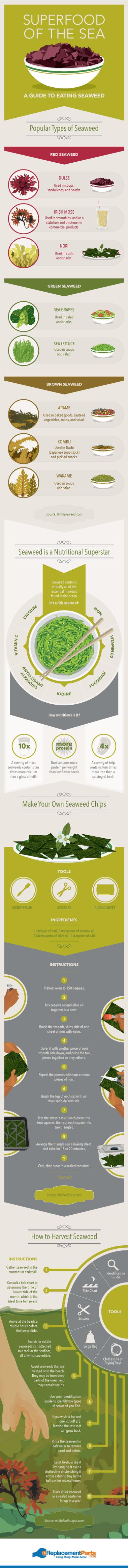 Seaweed the Superfood