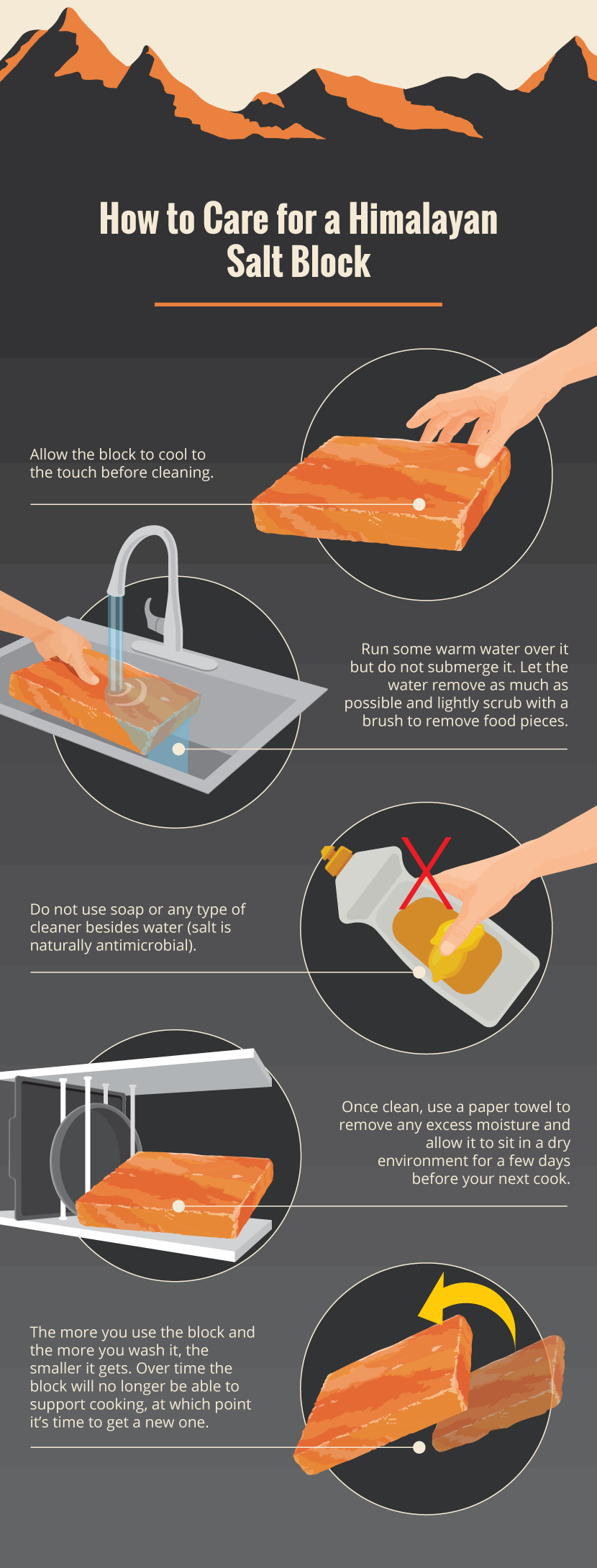 Caring For a Himalayan Salt Block - Grilling on a Himalayan Salt Block
