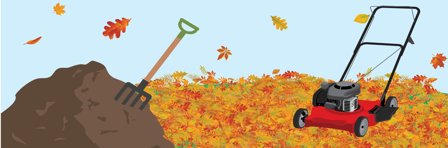 Fall Lawn Care: 4 Key Tips