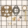 Briggs and Stratton Carburetor Overhaul Kit part number: 291691